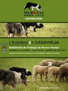 """I Exhibición de perros Pastor. @ Campo de fútbol de """"Las Eras"""""""