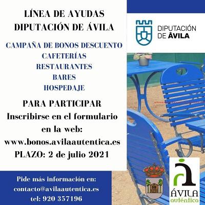LÍNEA DE AYUDAS DIPUTACIÓN DE ÁVILA