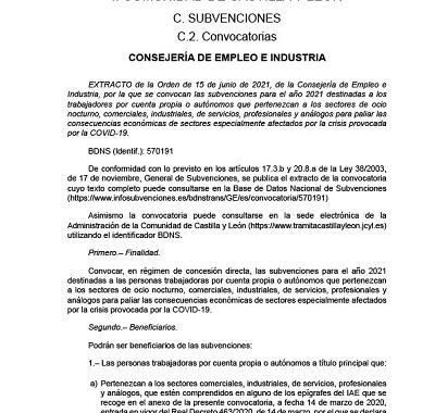 SUBVENCIONES SECTORES OCIO NOCTURNO, COMERCIALES, INDUSTRIALES, DE SERVICIOS, PROFESIONALES Y ANÁLOGOS DE CASTILLA Y LEÓN
