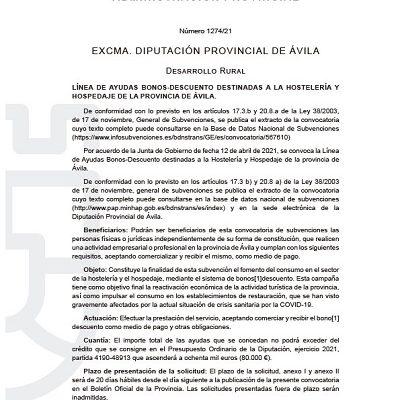 LÍNEA DE AYUDAS BONOS-DESCUENTO DESTINADAS A LA HOSTELERÍA Y HOSPEDAJE DE LA PROVINCIA DE ÁVILA