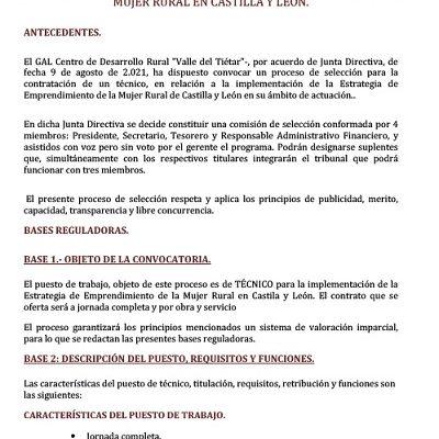 BASES REGULADORAS PROCESO DE SELECCIÓN DE PERSONAL PARA LA PROVISIÓN DE UNA PLAZA DE TÉCNICO PARA LA IMPLEMENTACIÓN DE LA ESTRATEGIA DE EMPRENDIMIENTO DE LA MUJER RURAL EN CASTILLA Y LEÓN